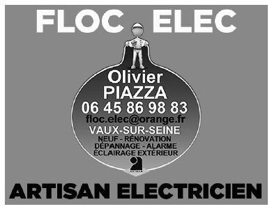 Pub_Floc-Elec