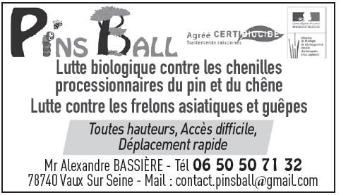 PINS BALL 0320